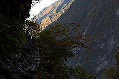 廊下 下 2020 ノ 黒部峡谷「下の廊下」 ※登山道未開通ため中止