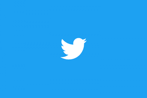Twitterbirdbluetop1