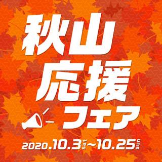 Bnr_201003_akiyama_1080_10801