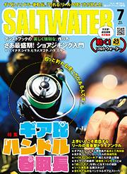 201707_soltwater