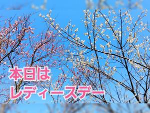 Photocollage_20210225_111512342